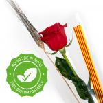 Rosa ya montada (bolsa BIOCOMPOSTABLE)