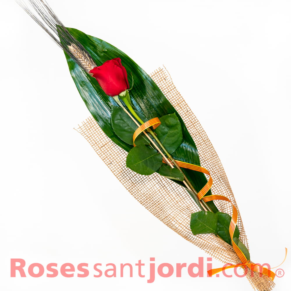 Rosa de Sant jordi Precio Rosa pro