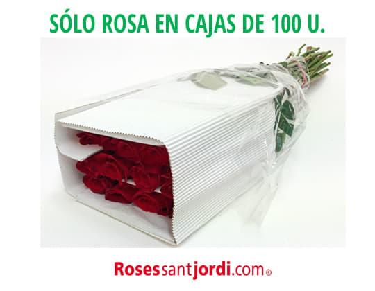 Rosa Freedom Sant Jordi