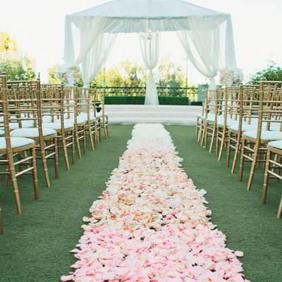 Pétalos de rosa boda