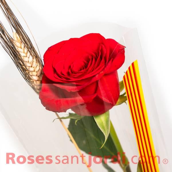 Rosas al por mayor