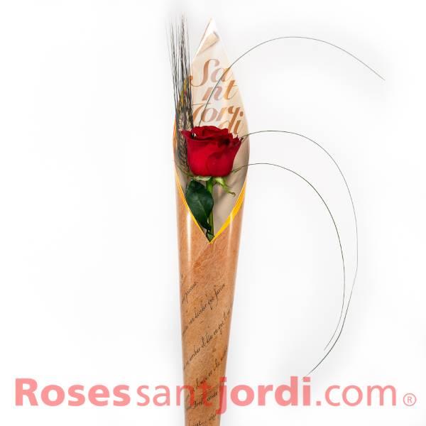 Jordi de la Rosa