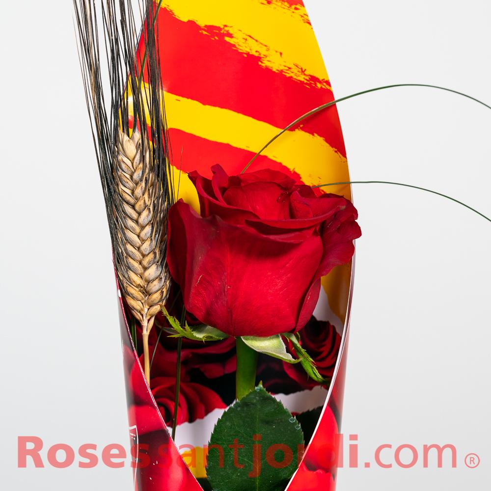 Rosa solidaria Suprem
