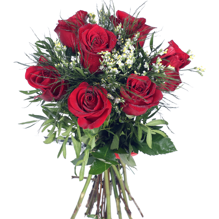 Envía 7 Rosas Rojas