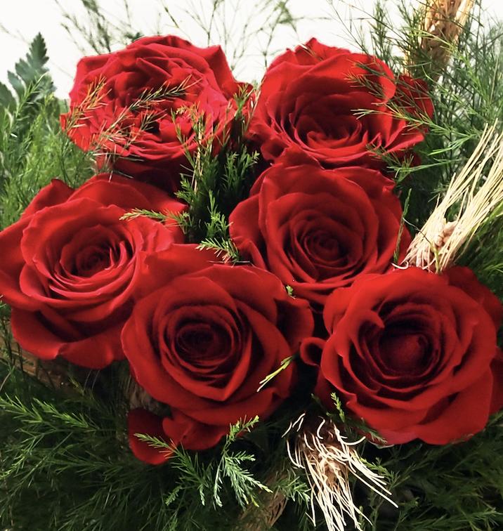 Envía Rosas Rojas